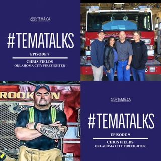 #TemaTalks Episode 9: Chris Fields