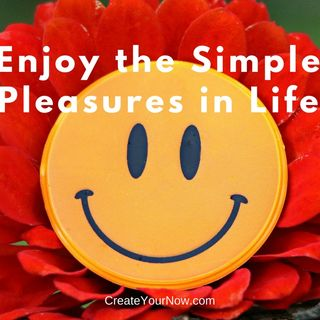 976 Enjoy the Simple Pleasures in Life