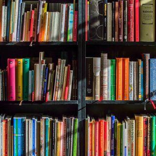 059 Come un libro di Narrativa favorisce la Coesione Aziendale - di Nicola Di Grazia