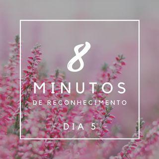 8 Minutos de Reconhecimento - Dia 5