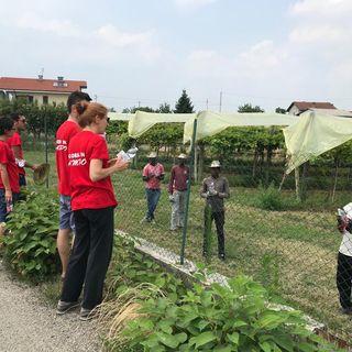 Tutto Qui - giovedì 4 giugno - Il protocollo tra Cgil e Diaconia valdese in agricoltura