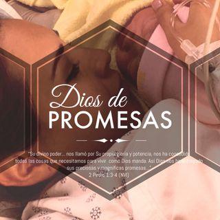 (1/6) Serie de Mensaje, sobre Él Espíritu Santo: 'Dios de Promesas.' | Música: 'Vengo ante ti' de ©Alejandro del Bosque de Vástago Prod.®