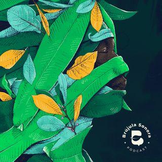 Ep. 14 Bosques, núcleos de vida