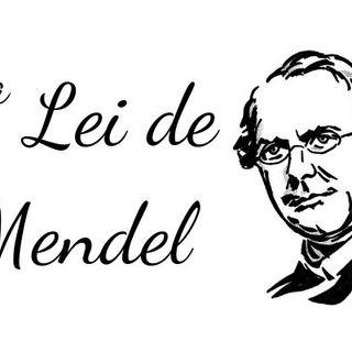 Episódio 01 - 1° Lei de Mendel