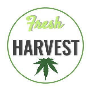 Fresh Harvest