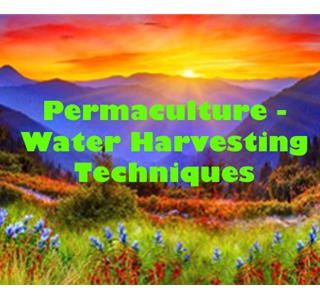 Permaculture - Water Harvesting Techniques