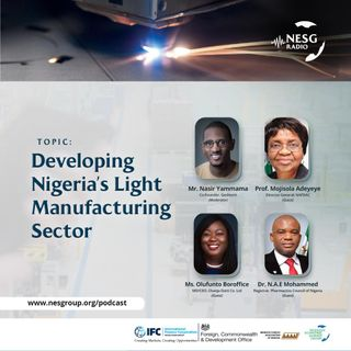 Developing Nigeria's Light Manufacturing Sector