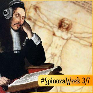 La Gerarchia della Cognizione: capire meglio l'uomo - #SpinozaWeek 3/7