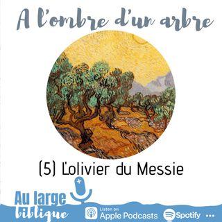 #176  A l'ombre d'un arbre (5) L'olivier du Messie