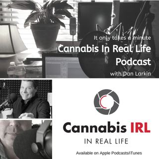 Cannabis In Real Life
