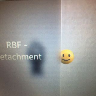 RBF-Detachment ♪
