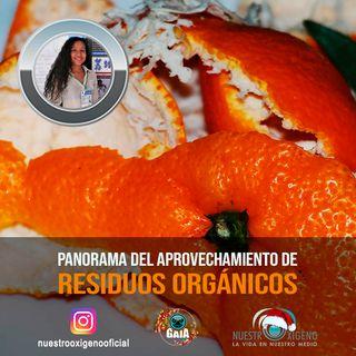 NUESTRO OXÍGENO Panoramas del aprovechamiento de residuos organicos - Ing. Valentina Arias