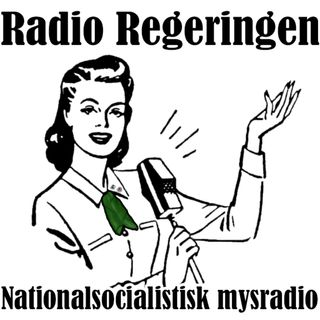 Radio Regeringen #168: Digitalisering