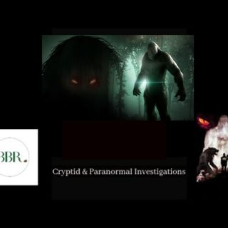 Bigfoot, Reptoids, UFO and a whole host of strange Events