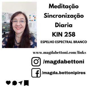 MEDITAÇÃO DE SINCRONIZAÇÃO DIARIA KIN 258