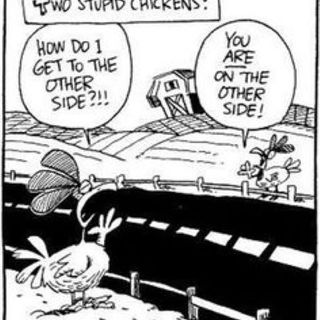 Episode 163 Suicidal Chicken