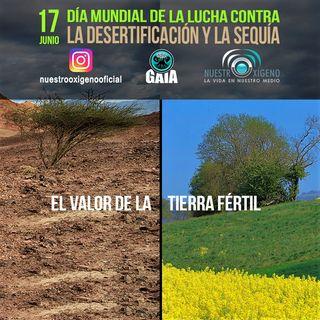 NUESTRO OXÍGENO El valor de la tierra fértil - Día mundial de la lucha contra la desertificación 2021