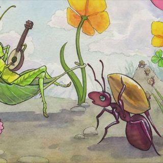 La cicala e le formiche