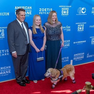 Chi Chi Lost All Four Legs But Never Lost Hope, Meet This Year's Hero Dog Award Winner