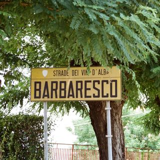 Ep 234: The Greats -- Barbaresco and Barolo