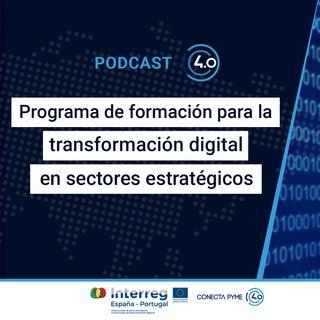 Formación para la transformación digital