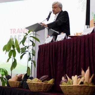 Sembrando Vida, impulsará sistemas productivos agroforestales