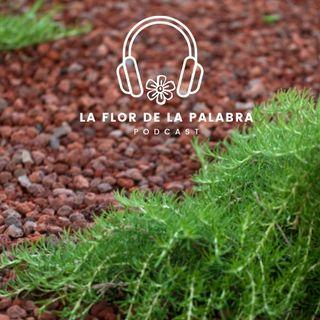 """La Flor de la Palabra. Capítulo 2 """"Romero"""""""