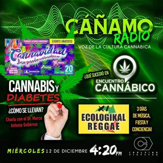 Canamo Radio 420 Guadalupacheco