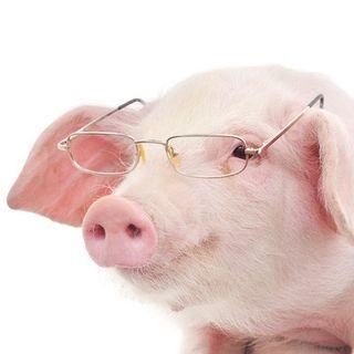 Un PIG, c'est quoi ?
