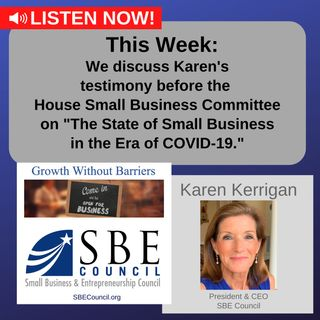 We discuss Karen's testimony before the House Small Business Committee on the COVID-19 economy.