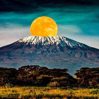 Monti e mondo islamico, uno stupido pregiudizio