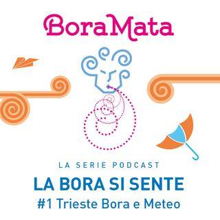 Trieste Bora e Meteo