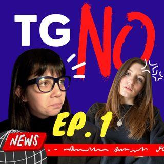 TG NO - La legge Zan
