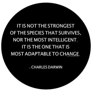 Recipe for Success- Adaptability