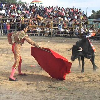 La mujer en los toros ¿Qué retos atraviesan?