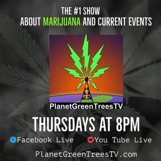 Planet Green Trees Episode - 440 - The  Search for Girth