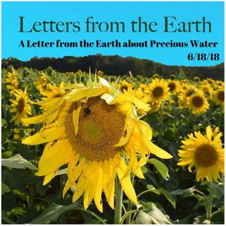 A Letter from the Earth about Precious Water 6182018