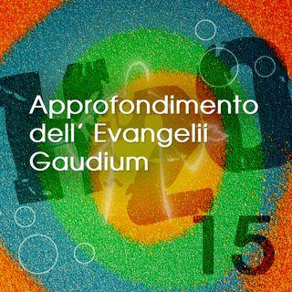 15. Approfondimento dell'Esortazione Apostolica Evangelii Gaudium