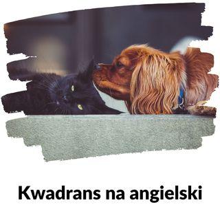 KNA: Lekcja 84 (zwierzęta domowe)