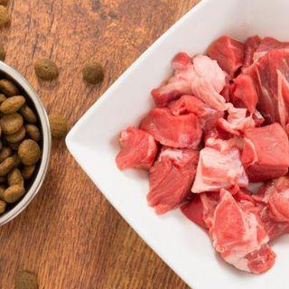 """#sarnano """"ho voglia di bistecca cruda"""""""