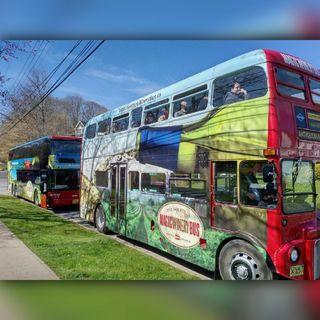 David Hovell - Magic Winery Bus