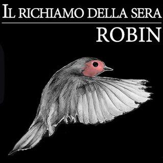 04 - Robin