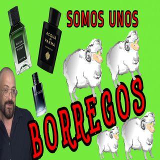 NO MAS TOMADURAS DE PELO