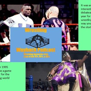 Pro-Wrestling for 1995--from a fans view