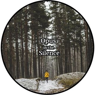 Opus in the Silence 8D-Audio by Nanni dj