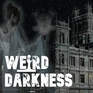 """Beachwood Lunatic Asylum"", ""Ancient Accounts of a 4th Dimension"" and more true paranormal tales!"