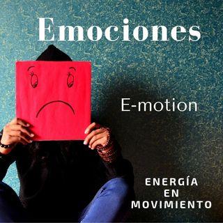 4.16 Las emociones -Siddhartha Ishaya-