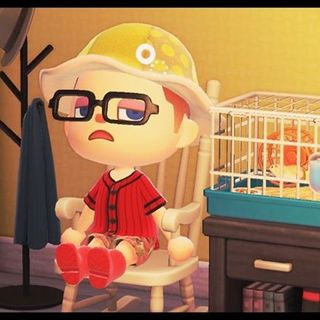 """Two Critical Halves - """"Animal Crossing: New Horizons"""""""