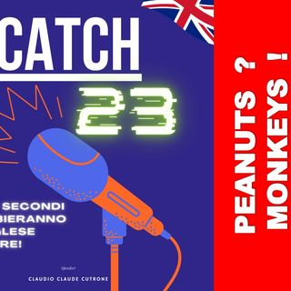 Catch 23 - Espressione IF YOU PAY PEANUTS GET MONKEYS