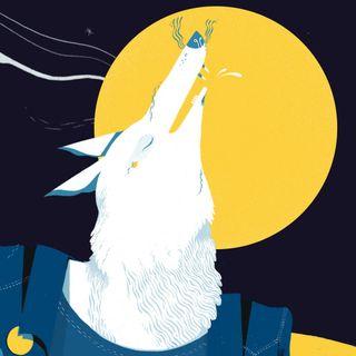 Torna l'Artico Festival - A Bra il 21 e il 22 giugno 2019